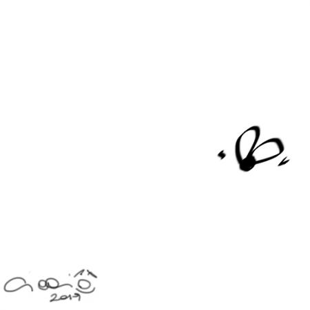 Muschillo_5